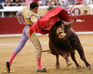 bayonnebullfighting