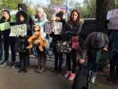 Мітинг «Зупиніть бійню бездомних тварин» відбувся під стінами прокуратури