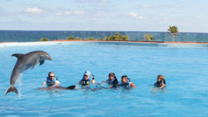 """The dolphinarium at Grand Sirenis Riviera Maya Resort & Spa in Tulum-Akumal, Mexico."""